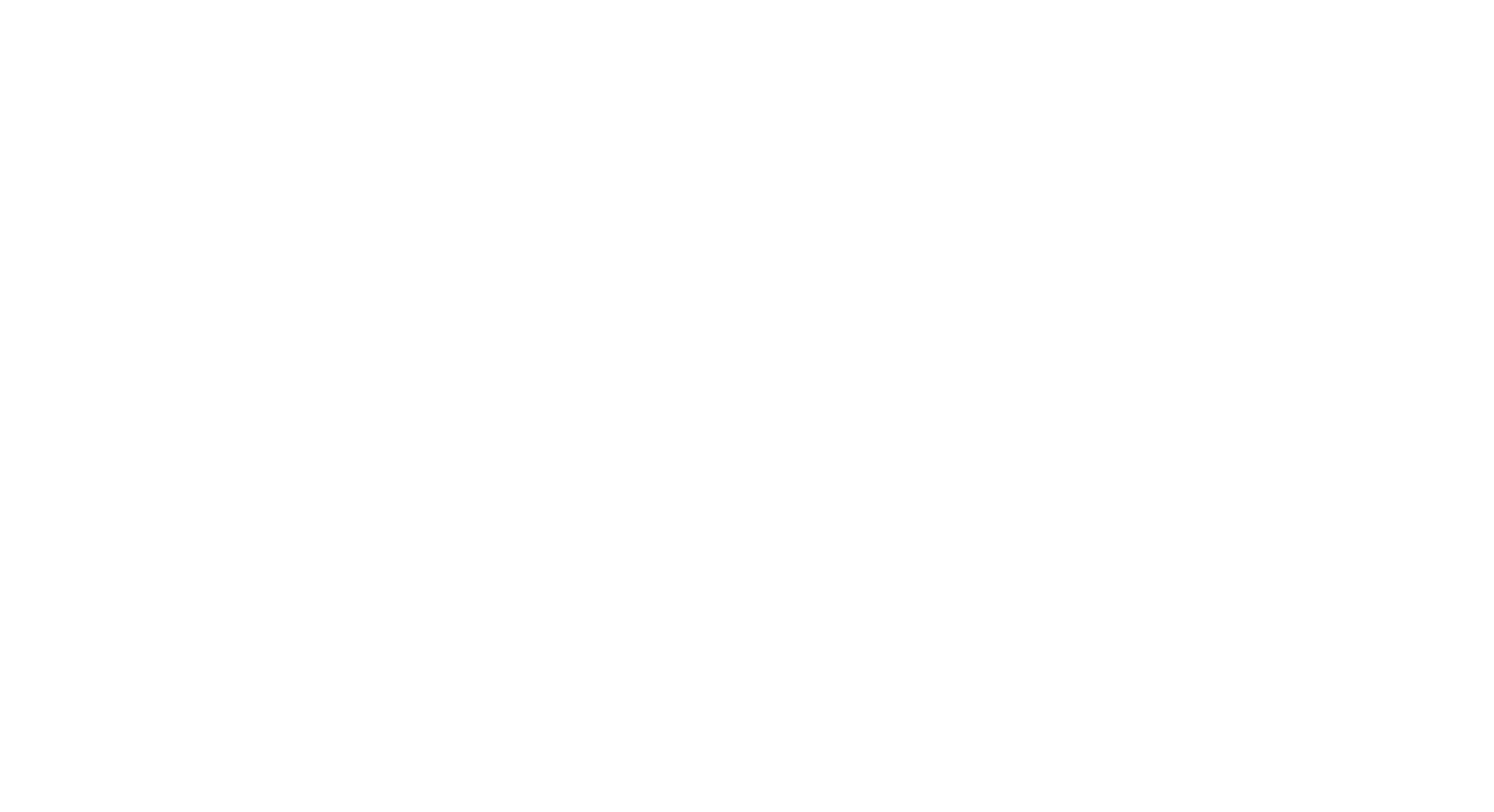 Official Selection MAGFest MIVS 2020
